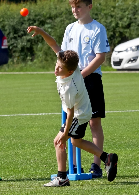 Cricket_01.jpg