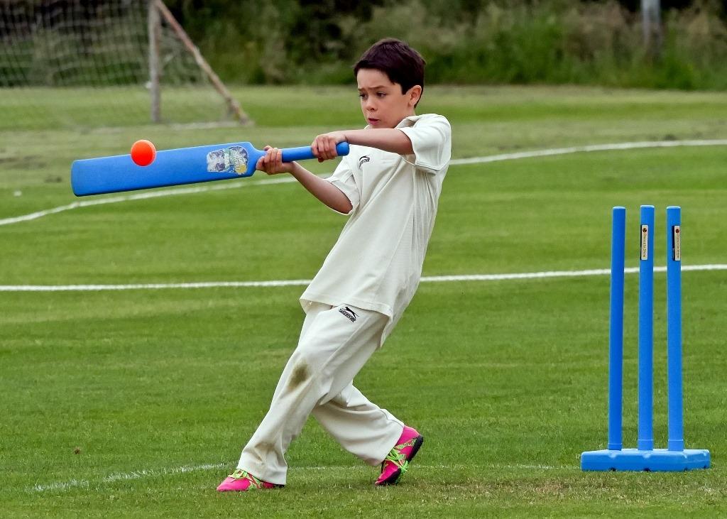 Cricket_02.jpg
