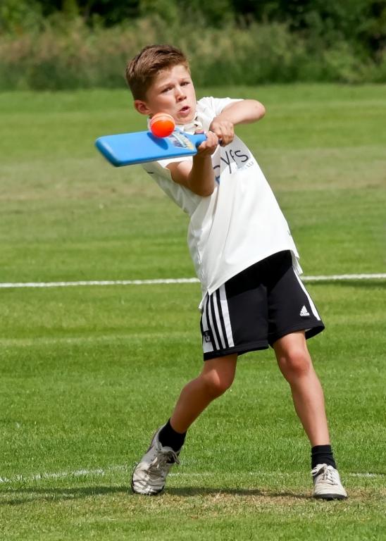 Cricket_04.jpg