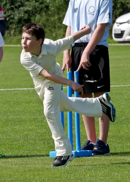 Cricket_05.jpg