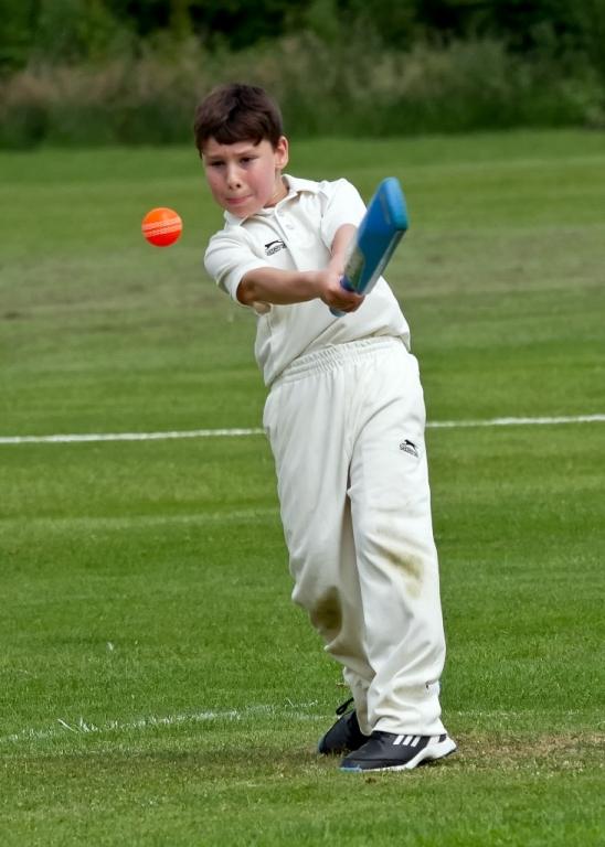 Cricket_06.jpg