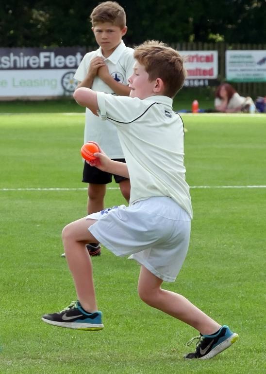 Cricket_07.jpg