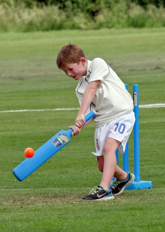 Cricket_08.jpg