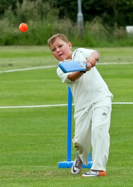 Cricket_09.jpg