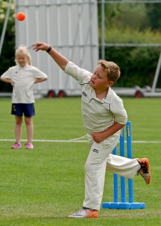 Cricket_10.jpg