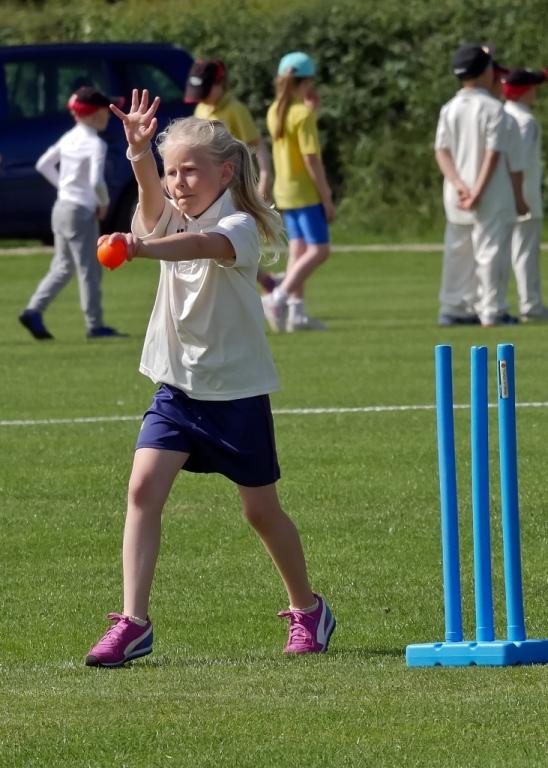 Cricket_11.jpg