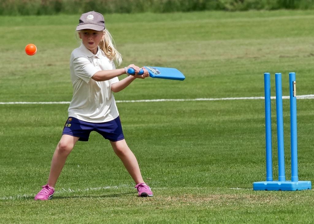 Cricket_12.jpg
