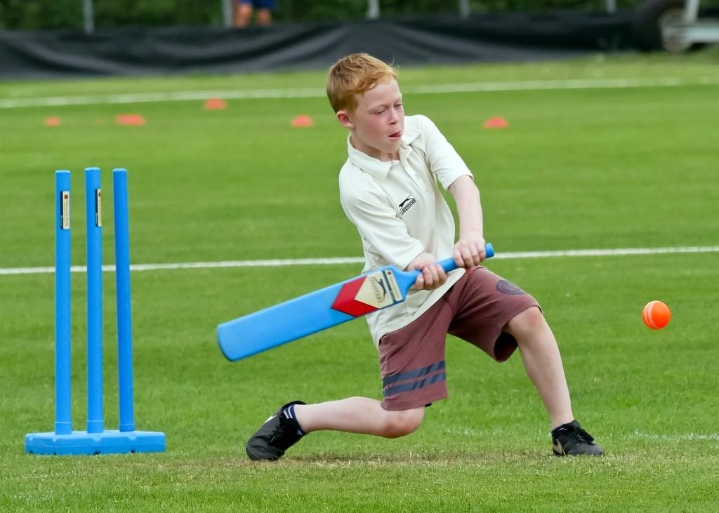 Cricket_13.jpg