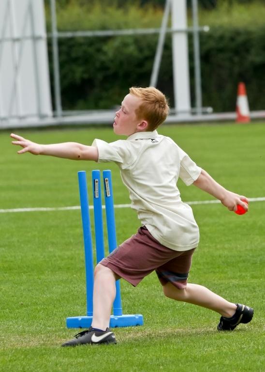 Cricket_14.jpg