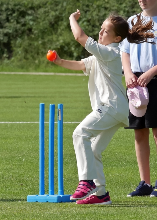 Cricket_19.jpg