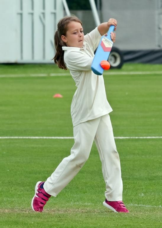 Cricket_20.jpg