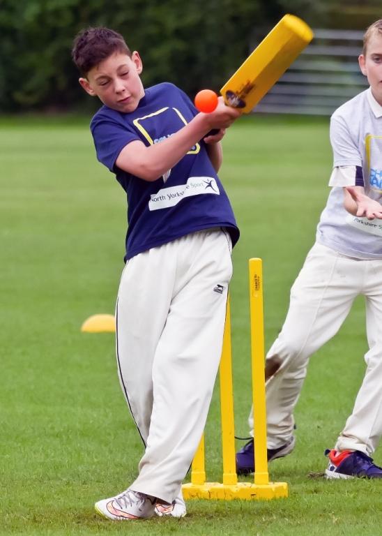 Cricket_21.jpg