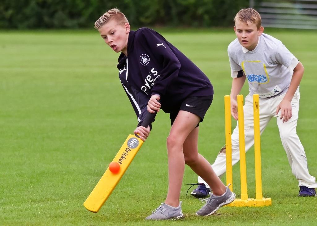 Cricket_22.jpg