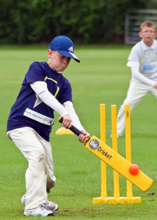 Cricket_23.jpg