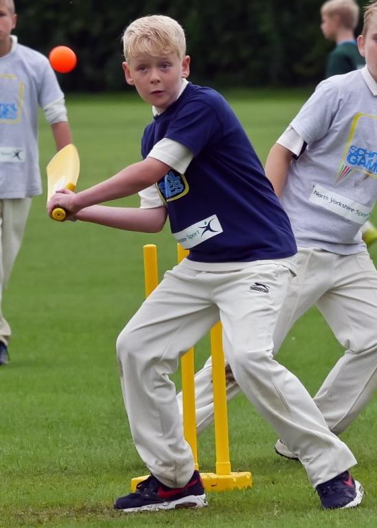 Cricket_24.jpg