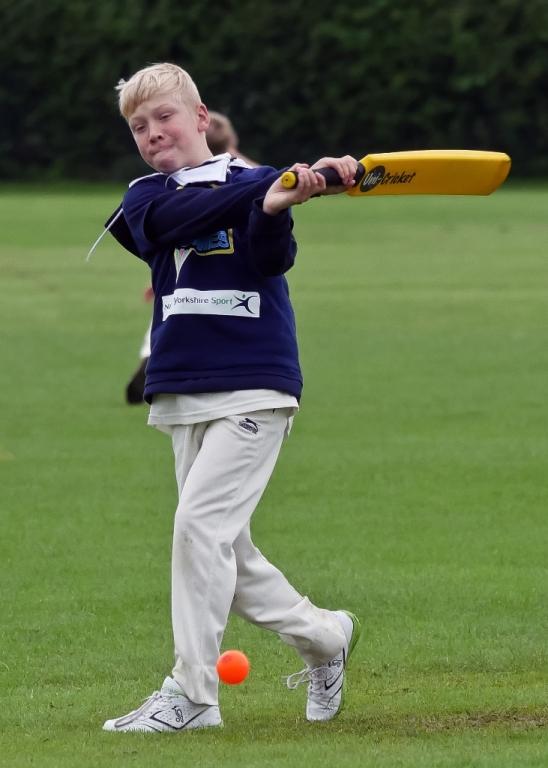 Cricket_25.jpg