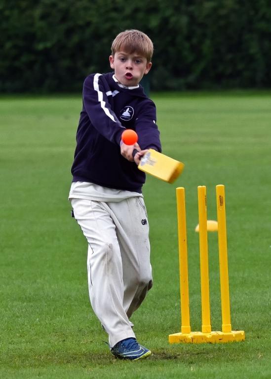 Cricket_26.jpg