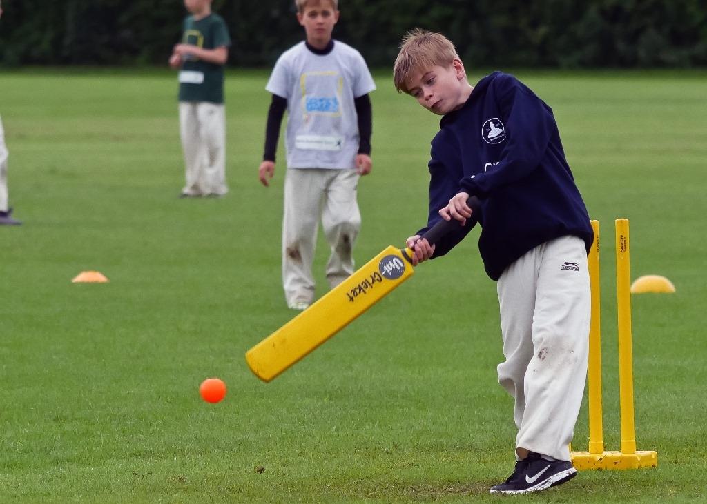 Cricket_27.jpg