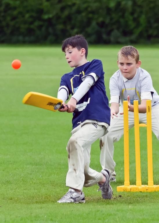 Cricket_28.jpg