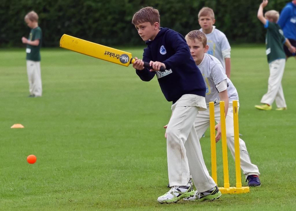 Cricket_29.jpg