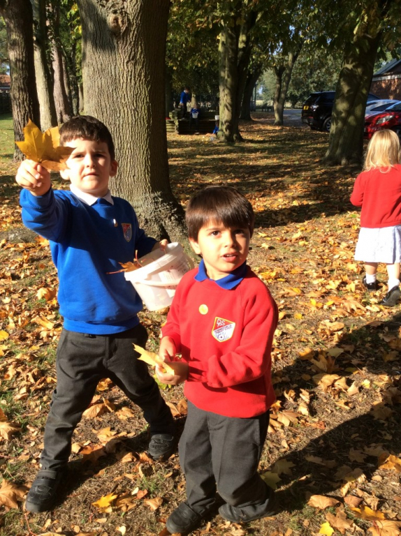 Reception in the Forest School (12)