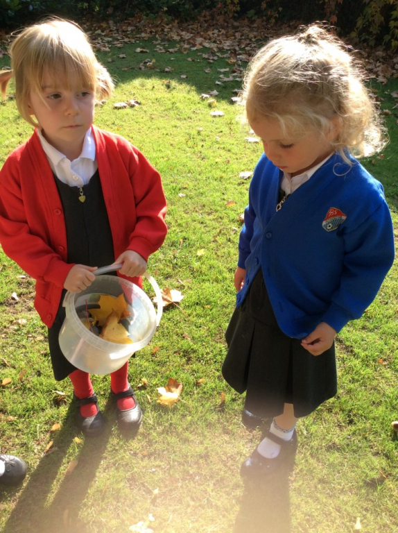 Reception in the Forest School (15)