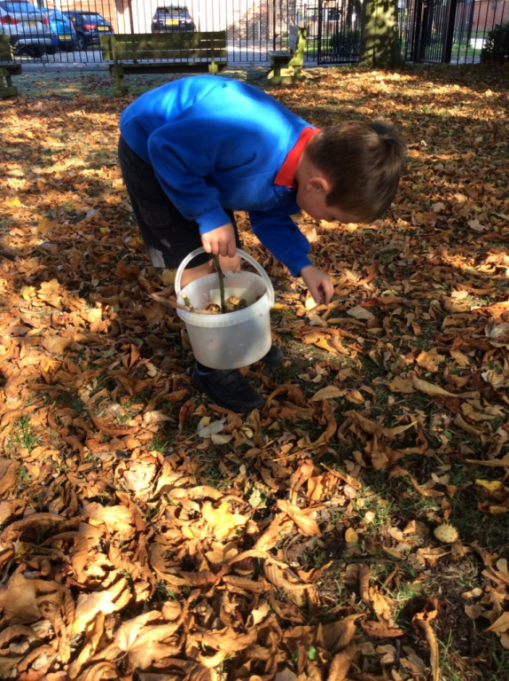 Reception in the Forest School (16)