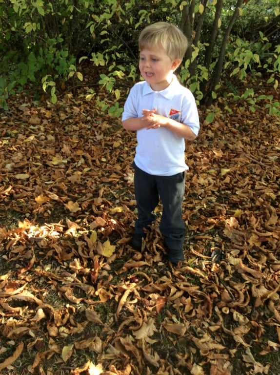 Reception in the Forest School (17)