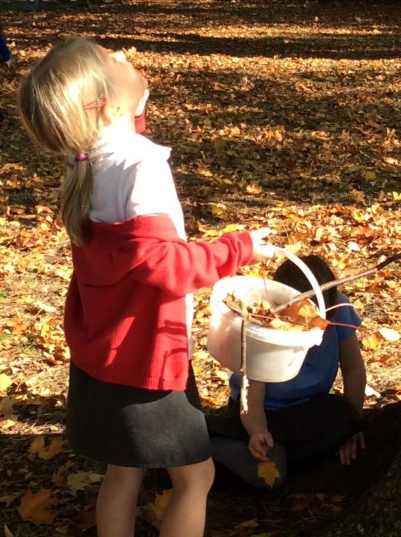 Reception in the Forest School (19)