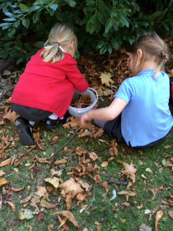 Reception in the Forest School (22)