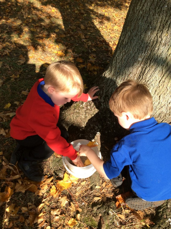 Reception in the Forest School (27)