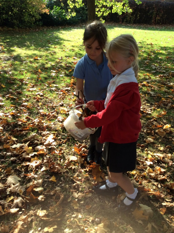 Reception in the Forest School (4)