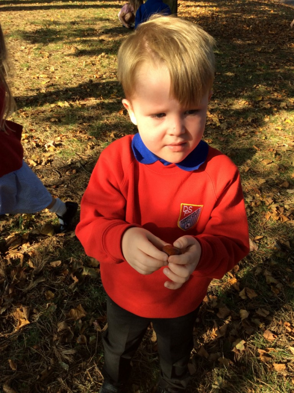Reception in the Forest School (41)