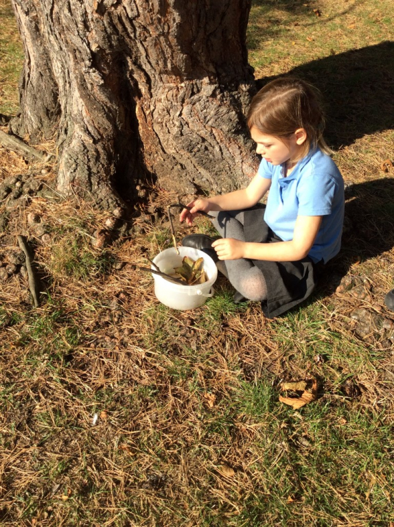 Reception in the Forest School (42)