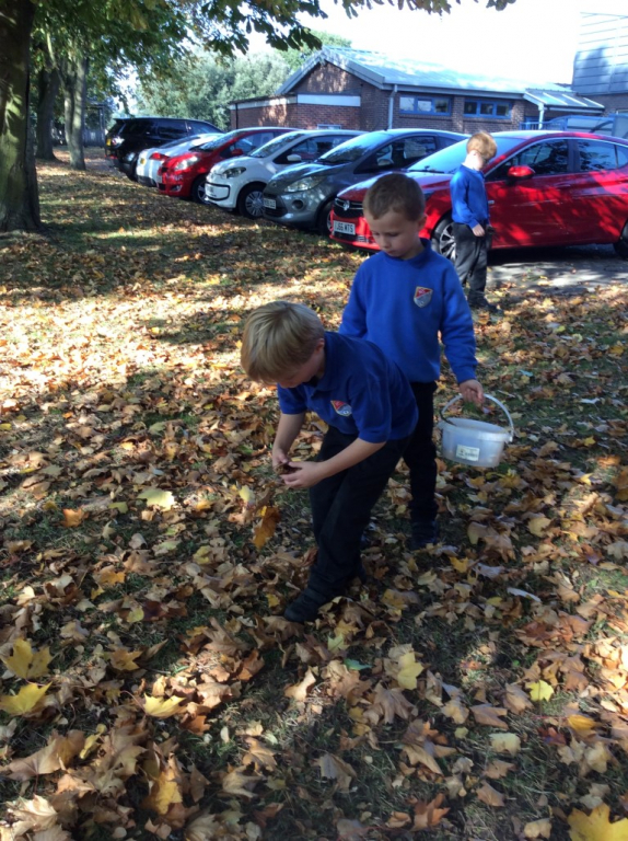 Reception in the Forest School (6)