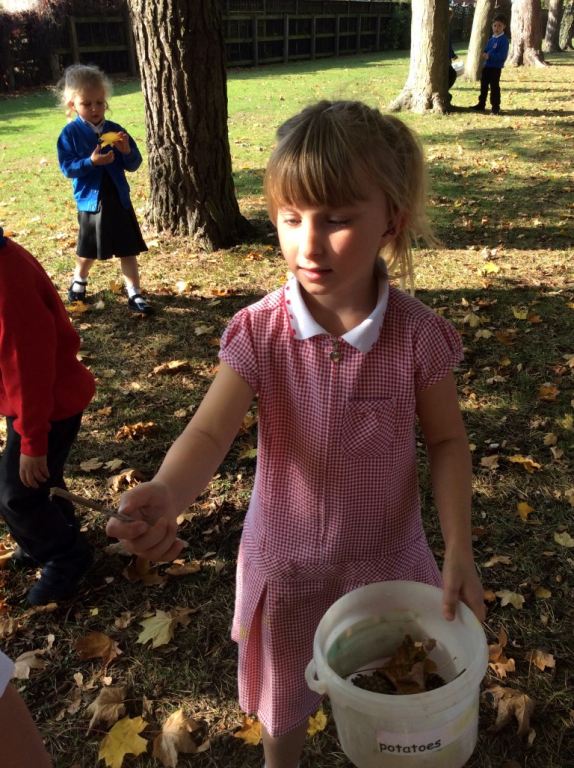 Reception in the Forest School (7)
