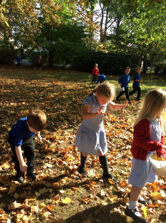 Reception in the Forest School (9)