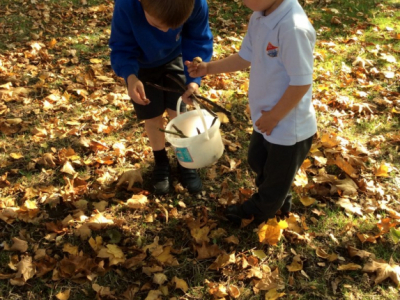 Reception in the Forest School (2)