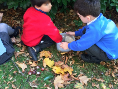 Reception in the Forest School (21)