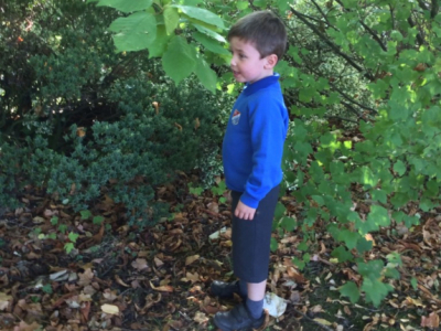 Reception in the Forest School (23)