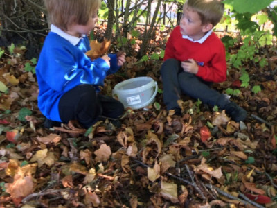Reception in the Forest School (24)