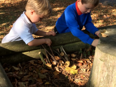 Reception in the Forest School (25)