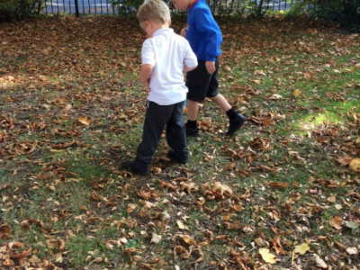 Reception in the Forest School (5)