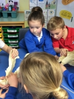 Spring Term in Year 2 (10)