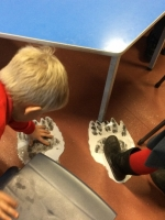 Spring Term in Year 2 (15)