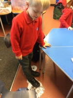 Spring Term in Year 2 (17)