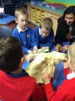 Spring Term in Year 2 (18)