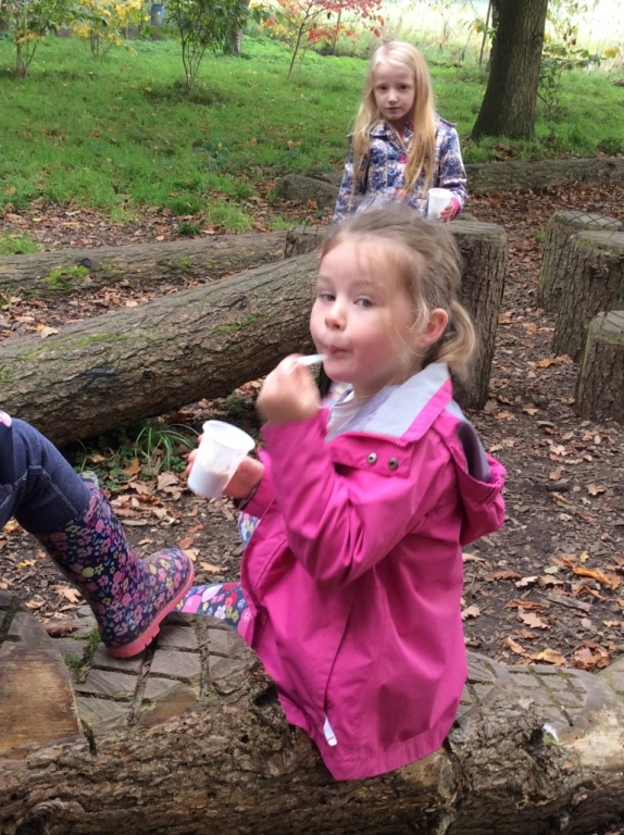 Yorkshire Arboretum (1)