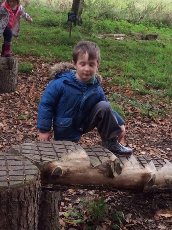 Yorkshire Arboretum (12)
