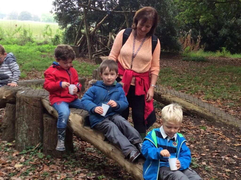 Yorkshire Arboretum (3)
